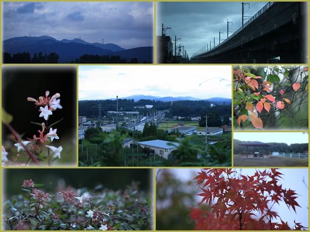 新幹線の見える丘公園 秋の気配