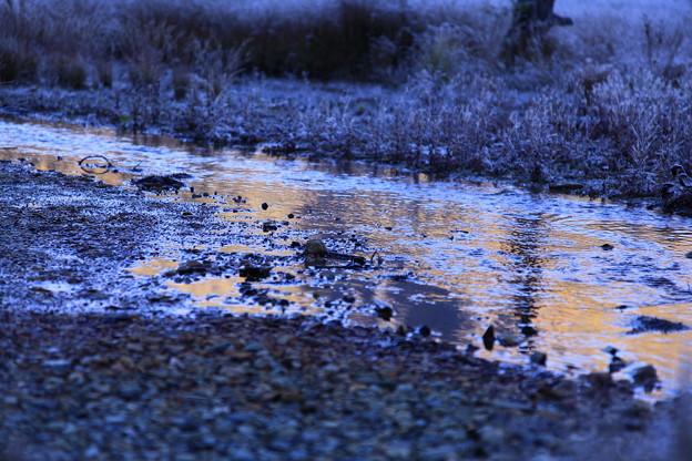 上高地 霜の朝