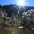 Photos: 田代池と日の出