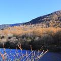 湯の湖と紅葉の山