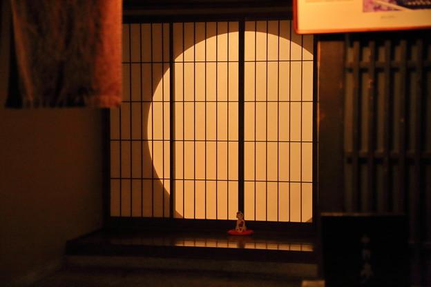 金沢ひがし茶屋街(1) 灯り