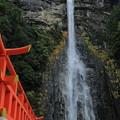 那智の滝 1