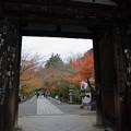 石山寺(2) 東大門から 紅葉