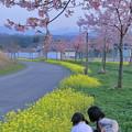 菜の花と桜 サッカー女子