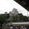 Photos: 姫路城?
