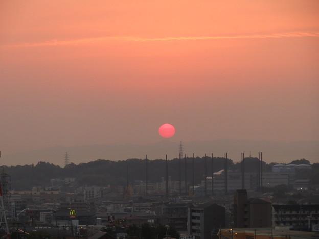 Photos: 朝日。
