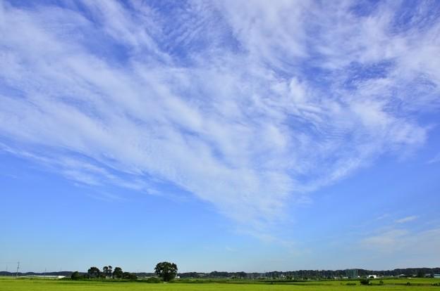 八幡神と手賀沼の空