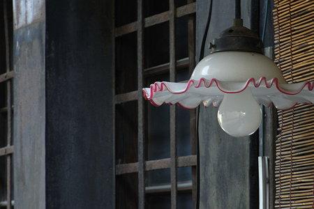 金魚の電燈