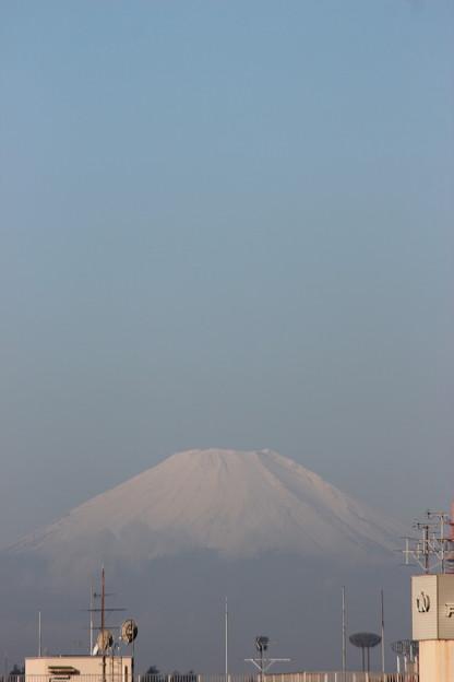 初冠雪 2014.10.16 7:22am