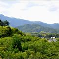Photos: 嵯峨の山