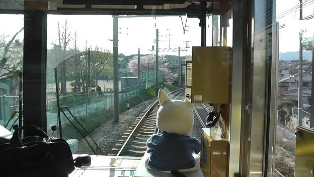 神鉄ミュージアムトレインの運転席2