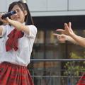 Photos: 姫路駅前芝生広場(KRD8ライブ)(第二部)0225
