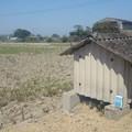 写真: 【今日の大都会岡山】こんなに小さい家に誰が住んでいるのだろう?w
