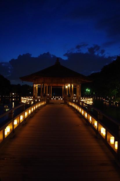 Photos: 奈良燈花会2014(浮見堂へ)