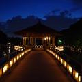 奈良燈花会2014(浮見堂へ)