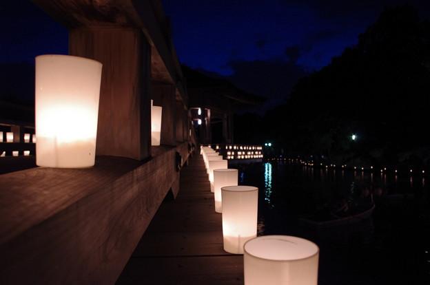 奈良燈花会2014(浮見堂薄明り)