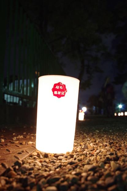 奈良燈花会2014(灯人の力)