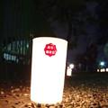 Photos: 奈良燈花会2014(灯人の力)