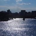 Photos: 隅田の流れ きらきらと