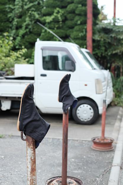 Photos: ちかれタビ~-1069