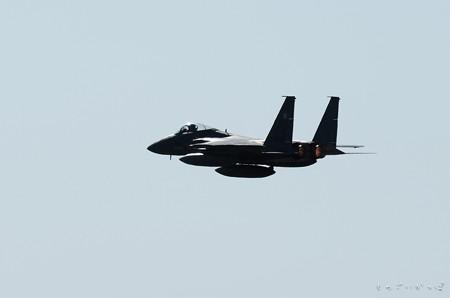 F15-2461