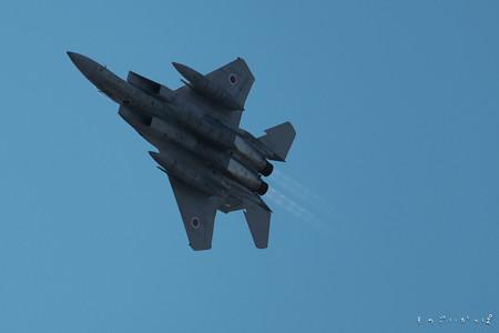 F15-2484