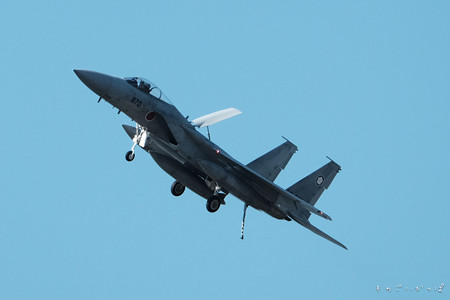 F15-2500