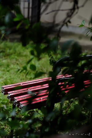 赤いベンチ-1539