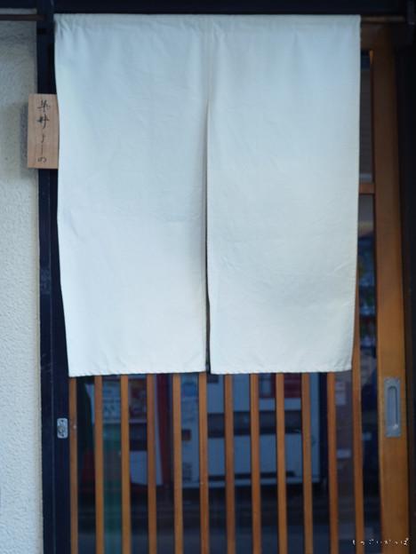 染井よしの-0048027