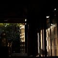 神明神社_拝殿-01200