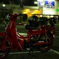 赤カブ-01710