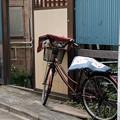 Photos: 虫干し-6599