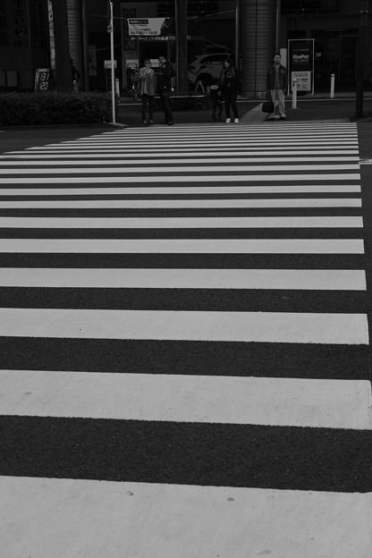 Photos: acros_横断歩道-6613
