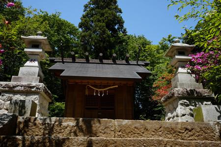 X70_滝山城_13_本丸霞神社-0765