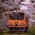 Photos: 再び走れメロス号を・・20140501