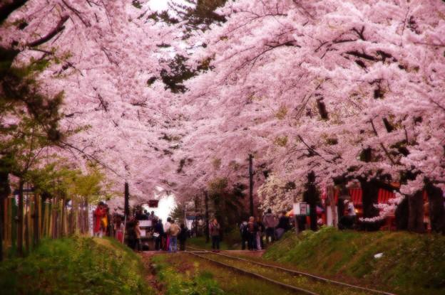 Photos: 再び列車を待つ・・20140501