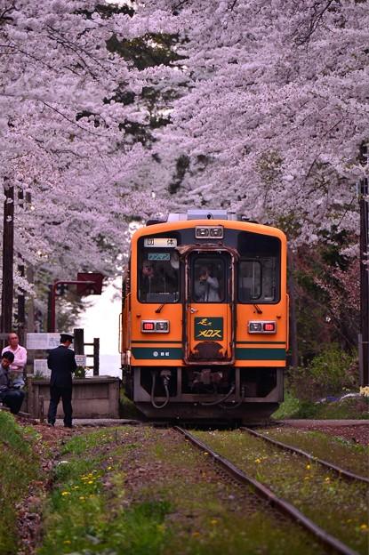 臨時列車・・走れメロス号 20140501