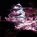 幻想的な夜の弘前城風景・・20140501