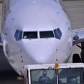 Photos: 一日3往復の東京便・・JAL B737-800 三沢空港・・20140502