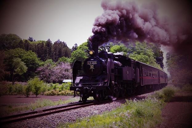 田舎の風景を力強く駆け抜けて真岡鐵道SL C11325・・20140511