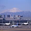 Photos: 綺麗な冬晴れの日 真っ白な富士山が羽田から・・20150131