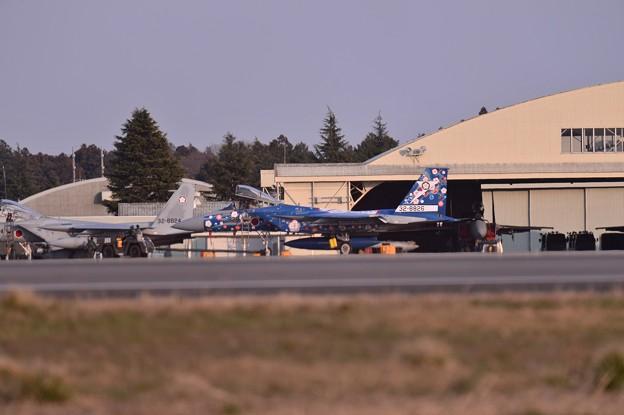 写真: 日米共同訓練では飛ばずだった第305飛行隊F-15スペシャルマーキング機・・20150313