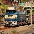 東戸塚駅で。。もう時期見れなくなるEF66電気機関車。。20151129