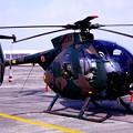 Photos: 小牧基地オープンベース。。地上展示陸上自衛隊OH-1観測ヘリ・・20150315