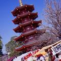 川崎大師の境内の出店と五重の塔。。20160228