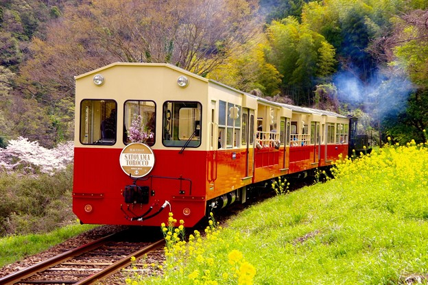 長閑に走る小湊鉄道トロッコ列車の旅。。20160409