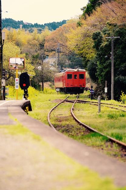 いすみ鉄道の上総中野駅へ。。キハ52(^^) 20160409