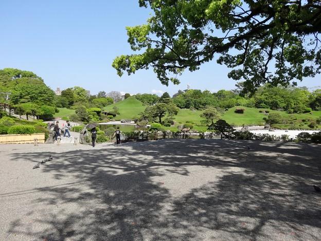 水前寺成趣園 内部 2016-04-22