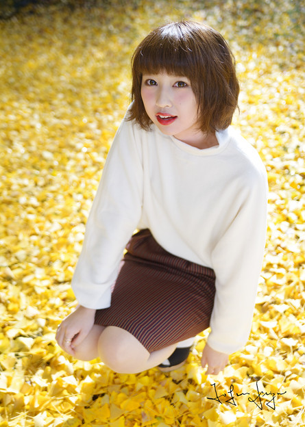 奈穂銀杏の絨毯