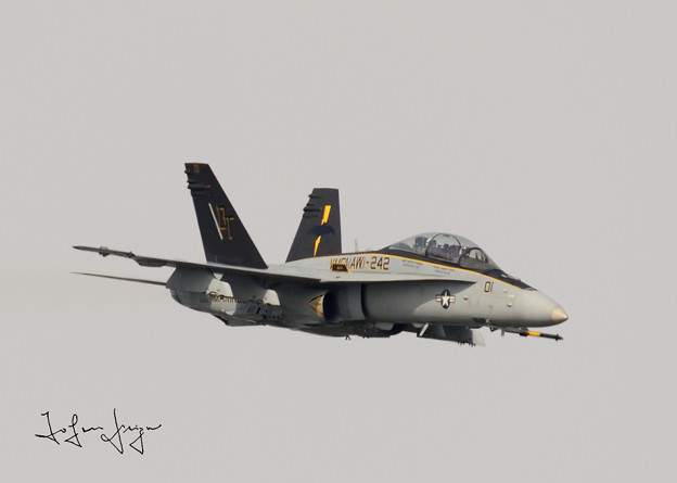 FA-18D正面右